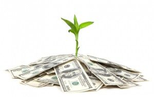 Plant comming out of a pile of bills to represent passive income growth